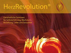 0-Startseite-Institut-BLL-HerzRevolution_400-300W