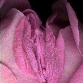 Warum Tantra in geschlechtsspezifischen Räumen heilsam wirkt